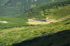 озеро гористой местности Стоковое Изображение RF