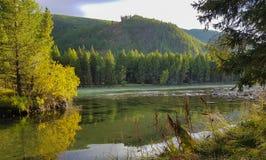 Озеро горы Altai горы Стоковые Изображения RF