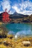 Озеро гор дрожи Стоковые Фотографии RF