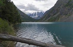Озеро гор на пасмурный день Altai, Россия стоковое фото
