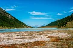Озеро гор среди заросших лесом наклонов Взгляд долины Стоковое фото RF