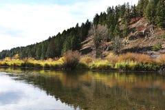 Озеро гор с цветами падения Стоковое Изображение