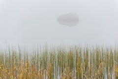 Озеро головорез в тумане Стоковые Изображения RF