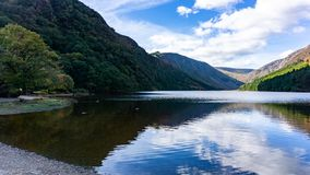 Озеро графств Glendalough с утками стоковые изображения rf