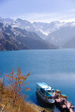 озеро гребли Стоковые Фотографии RF