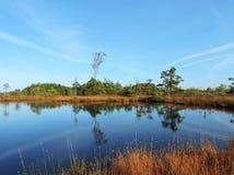 Озеро, деревья и красивое облачное небо, Литва Стоковые Фотографии RF