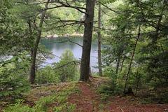 Озеро Джек Стоковые Фотографии RF