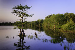 Озеро Джонс Стоковое Изображение