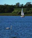 озеро дня Стоковое Изображение RF