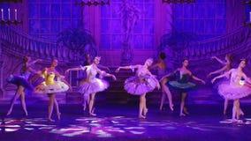Озеро лебед - звезда балета Москвы видеоматериал