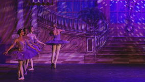 Озеро лебед - звезда балета Москвы сток-видео
