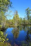 Озеро лес в после полудня осени Стоковая Фотография