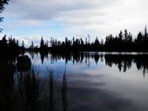 Озеро лес Стоковые Фотографии RF