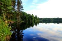 Озеро лес Стоковое Фото