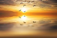 Озеро жуткое Стоковые Фотографии RF