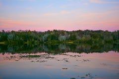 Озеро заболоченное место на заходе солнца Стоковая Фотография