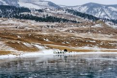 озеро замерли baikal, котор Отражение горы поверхность льда на морозный день Естественная предпосылка Стоковые Фотографии RF