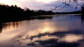 Озеро запруд бобра сток-видео