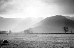 озеро заречья Стоковые Фотографии RF