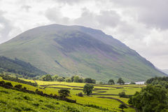 озеро заречья cumbria сельской местности английское pastures весна Великобритания овец Стоковые Изображения