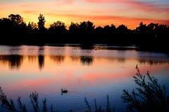 Озеро заход солнца с отражением Стоковое Изображение