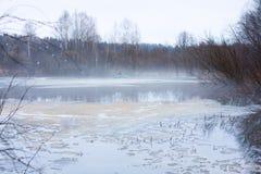 Озеро звероловства утки Стоковое Изображение