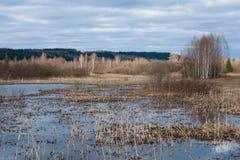 Озеро звероловства утки Стоковое Изображение RF