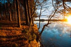 Озеро зим в декабре Стоковые Фотографии RF