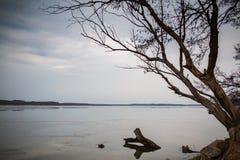 Озеро зим Стоковое Фото