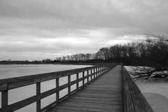 Озеро зим Стоковая Фотография RF