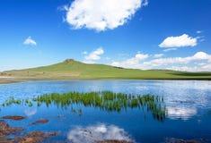 озеро злаковика Стоковое Фото