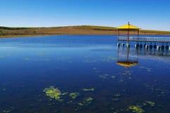 озеро злаковика Стоковая Фотография