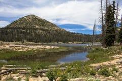 озеро длиной Стоковая Фотография