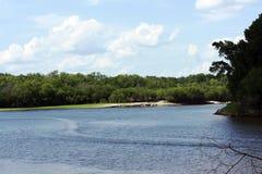 Озеро и берег озера Стоковые Фотографии RF