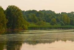 Озеро и деревья вокруг Стоковые Фото