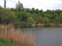 Озеро и зеленые берег и горный склон Стоковая Фотография