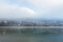 Озеро и лес зим Стоковые Изображения