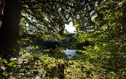 озеро и небо Стоковые Фото