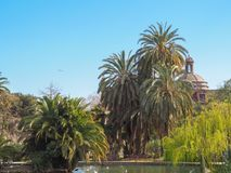 Озеро и пальмы в испанском парке Стоковая Фотография