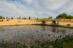 Озеро и песок Стоковые Изображения RF