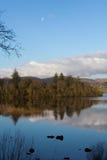 Озеро и пуща Стоковые Фото