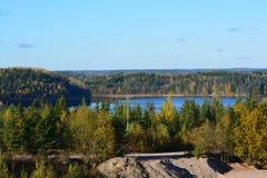 Озеро и древесины Стоковые Фото