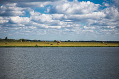 Озеро и стога сена Стоковые Изображения
