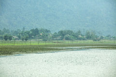 Озеро и трава Noong стоковое фото rf
