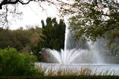 Озеро и фонтан Стоковое Изображение RF
