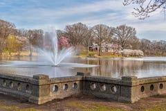 Озеро и фонтан Brook Park ветви стоковые изображения