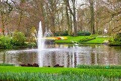 Озеро и цветочный сад фонтана весной Стоковые Изображения RF