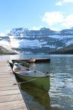 Озеро Камерон в национальном парке ледника Стоковые Фото