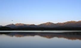 озеро Корсики птицы Стоковое Изображение