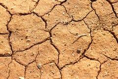 озеро кровати сухое Стоковая Фотография RF